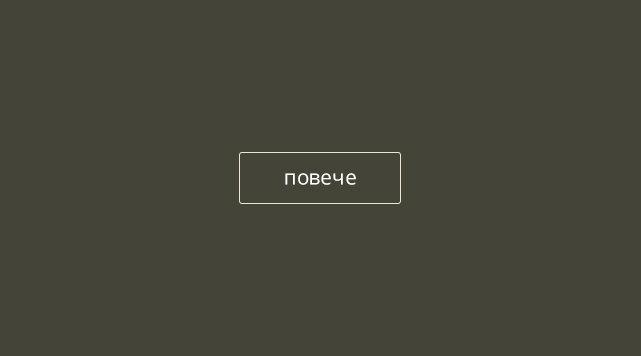 новини от пойнтер клуб България
